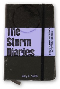 The Storm Diaries front cover